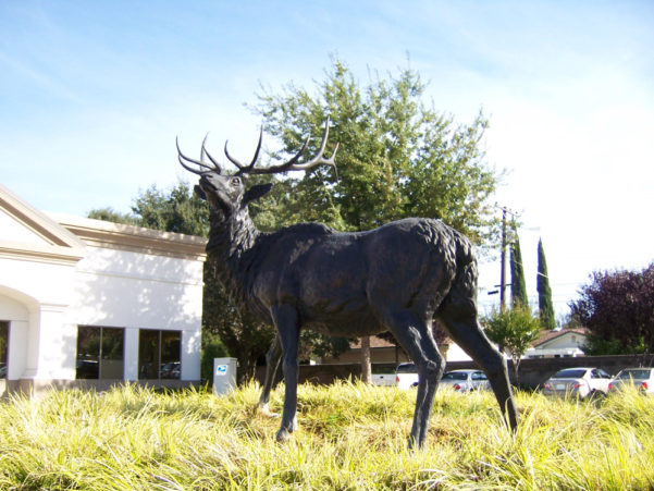 The History of Elk Grove